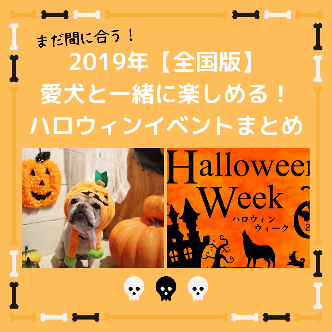 2019犬と参加できるハロウィンイベント特集